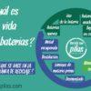 Cómo se tratan en Andalucía los residuos de pilas